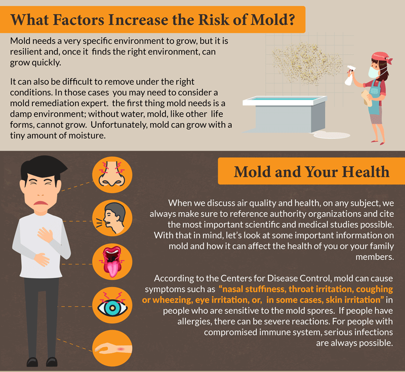 Most Common Forms of Household Mold - pic 3